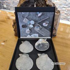 Amuse schelpen 4stuks van geborsteld tin bij de zilverjutter