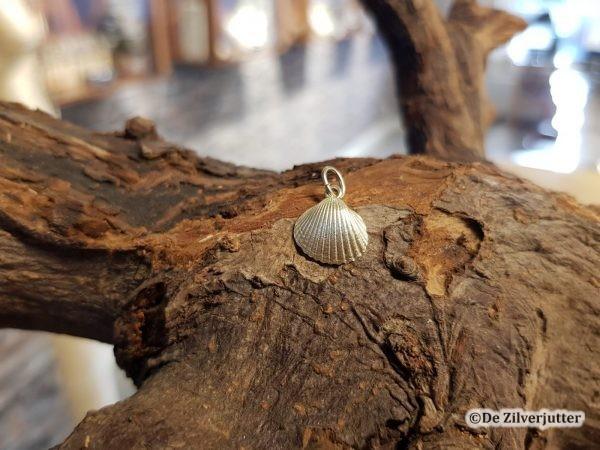 Gouden kokkeltje schelp hanger