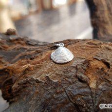 Schelpenhanger Venusschelp zilver
