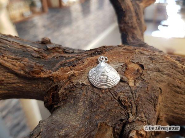 Zilveren Venusscchelp (M) hanger