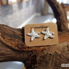 Zilveren oorstekers met zeester