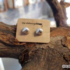 zilveren alikruik scheelp oorstekers-oorbellen